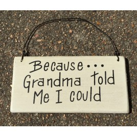 Because...Grandma Told me I could wood sign