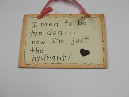 35243 - I Used to Be Top Dog....Now I'm just the hydrant! wood sign